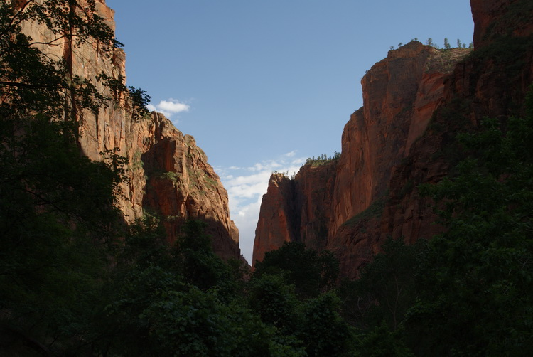 More Zion Awesomeness